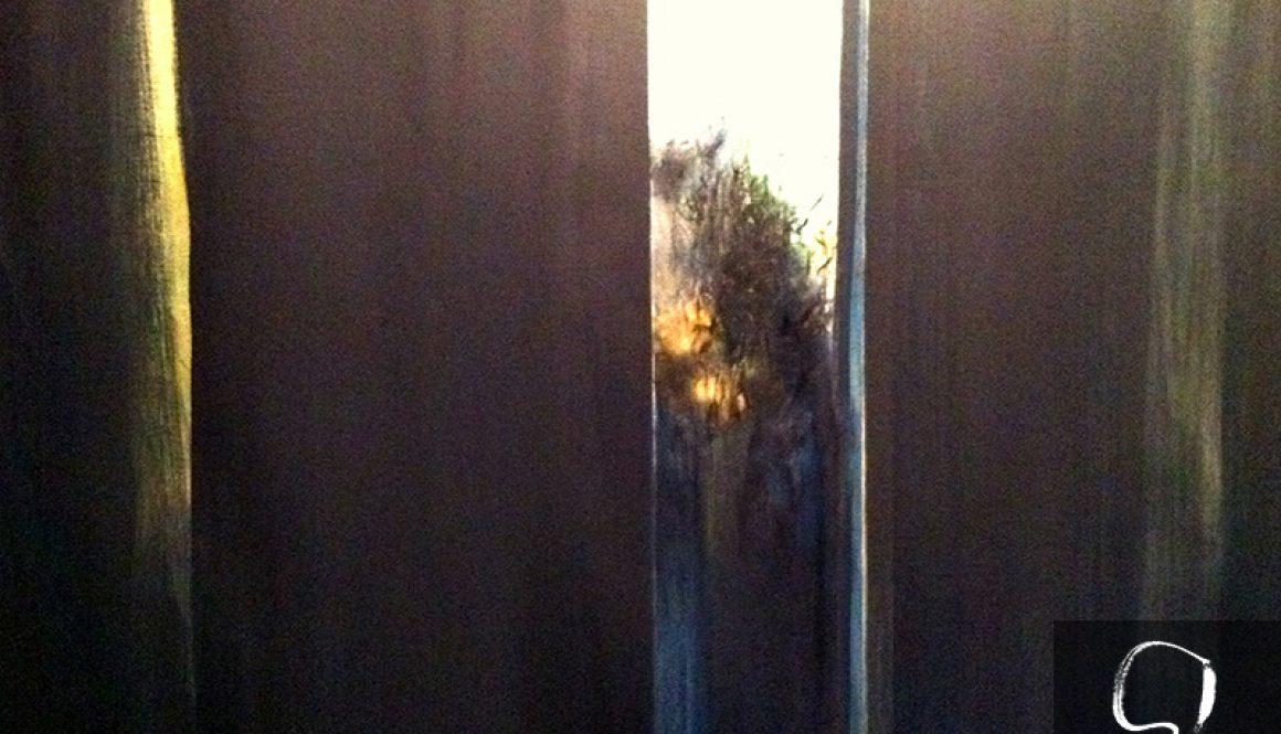 Dawn through my window