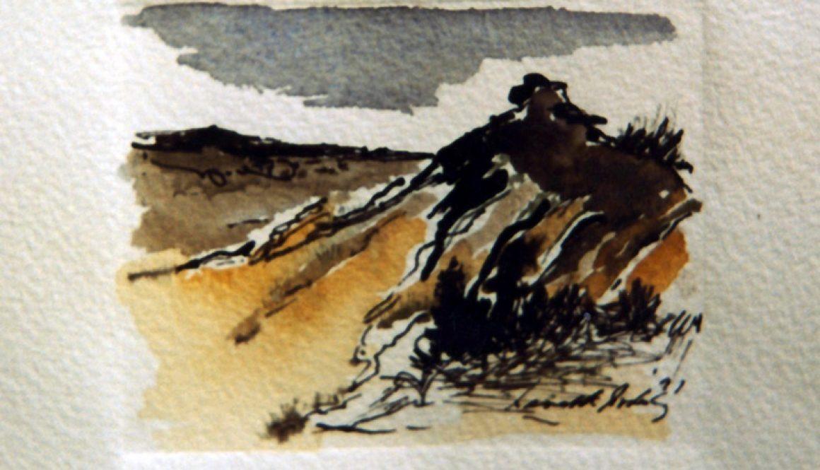 Breamlea Dune